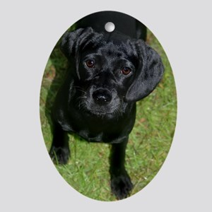 Black Lab Puppy Oval Ornament