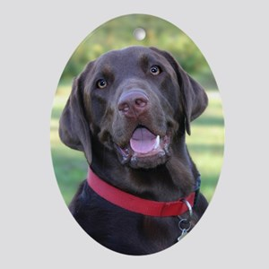 Chocolate Lab Oval Ornament