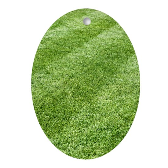 Jew Detector: Grass Lawn Oval Ornament By Science-Photo-Library