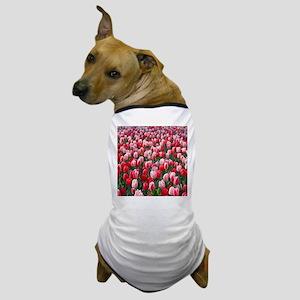 Red & Pink Tulips Holland Netherlands Dog T-Shirt
