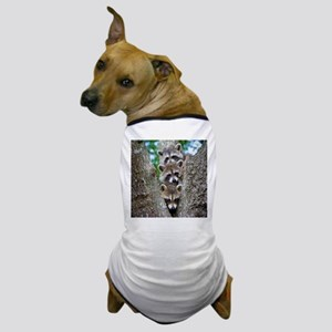 Baby Raccoon Trio Dog T-Shirt