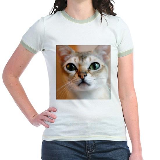 47b258d3 d147mi Jr. Ringer T-Shirt Happiness is a Singapura Cat Jr. Ringer T ...