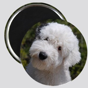 olde english sheepdog puppy Magnets