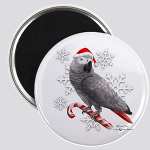 Christmas African Grey Parrot Magnets