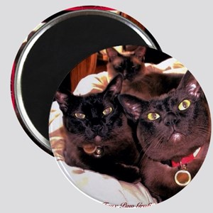 Three Cats Magnet