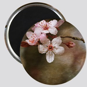 cherry blossom flowers Magnet