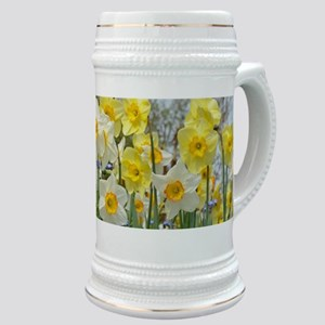 White and yellow daffodils Stein