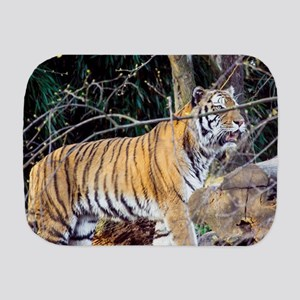 Tiger in the woods Burp Cloth