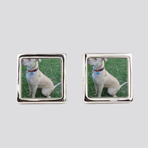 Pit Bull Square Cufflinks