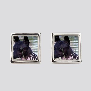 american hairless terrier Square Cufflinks