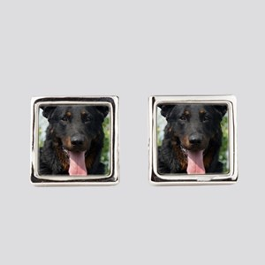 beauceron black and tan Square Cufflinks