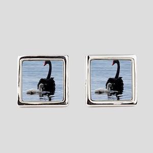 Black Swan and Cygnet 9Y885D-020 Cufflinks
