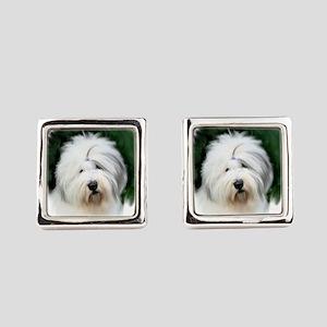 old english sheepdog portrait Square Cufflinks