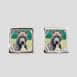 blue dog Square Cufflinks