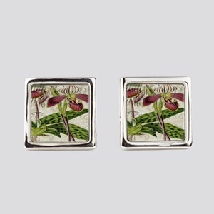 vintage orchid french botanical Square Cufflinks