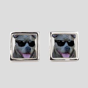 Pitbull in sunglasses Square Cufflinks