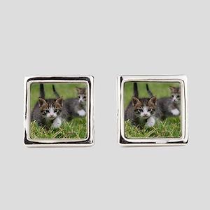 Cat_2015_0102 Square Cufflinks