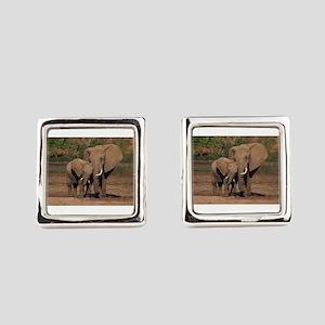 elephants Square Cufflinks