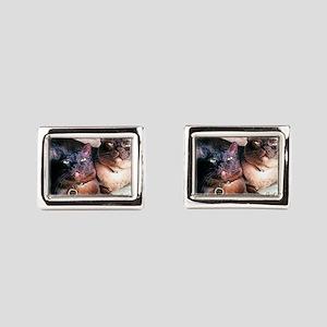 Burmese cat siblings, 2 Cufflinks
