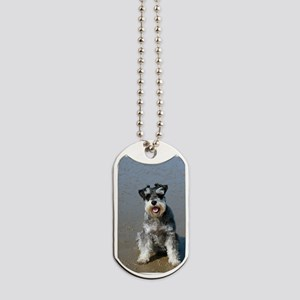 miniature schnauzer on beach Dog Tags