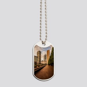 Boston Golden Hour Dog Tags