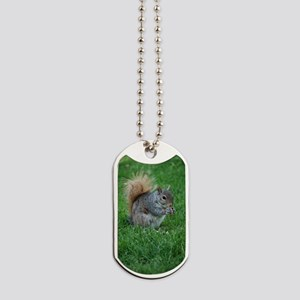 Squirrel in a Field Dog Tags