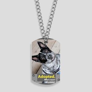 Australian Cattle Dog ( Blue Heeler ) Dog Tags