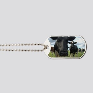 Here's Looking At You Babe! Dog Tags
