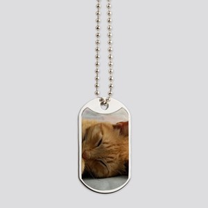 Sweet Dreams Dog Tags