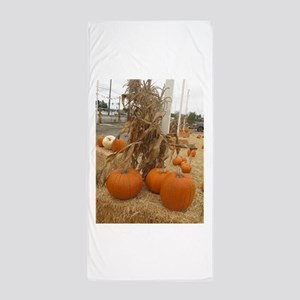 orange pumpkin stalk Beach Towel