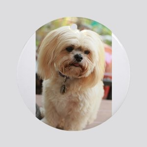 Koko blond lhasa apso close portrait Round Ornamen