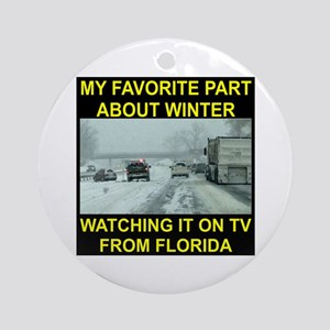 Watching It On TV In FLA Ornament (Round)