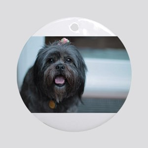 smiling lhasa type dog Kona Round Ornament