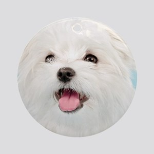 Cute Maltese Round Ornament