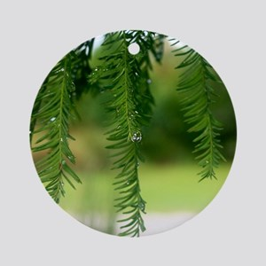Morning Dew Round Ornament