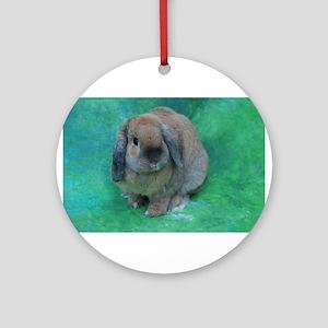 Lop Eared Rabbit Ornaments Cafepress