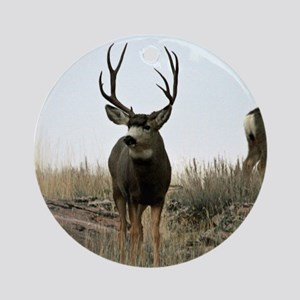 Mule deer buck and does Ornament (Round)