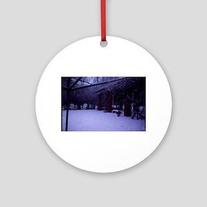 PICT0054 winter scene with snow Round Ornament