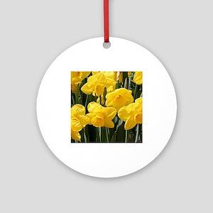 Daffodil flowers in bloom in gard Ornament (Round)