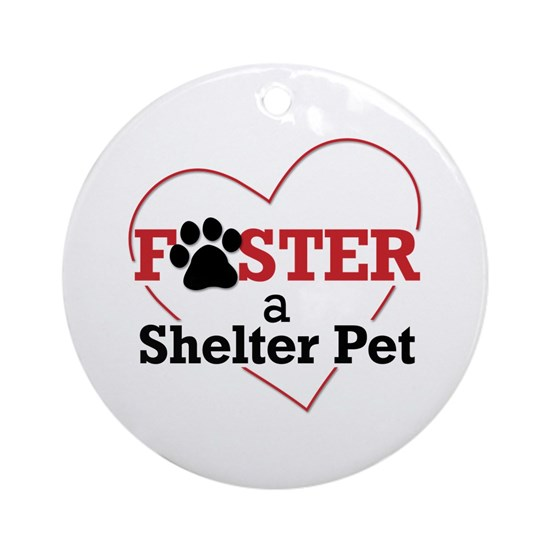 Foster a Shelter Pet