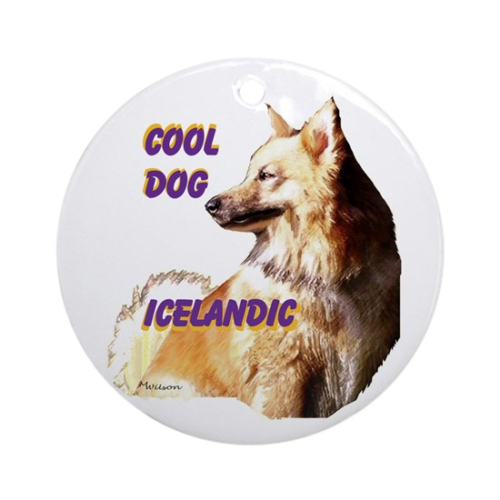 Icelandic sheepdog cool dog