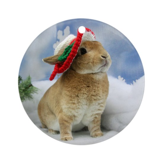 Bunny Christmas Ornament Round Ornament by Admin ...