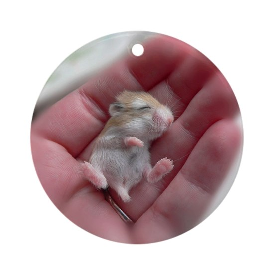 Adorable Sleeping Baby Hamster Round Ornament