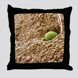 Bee pollen basket, SEM Throw Pillow