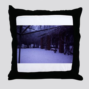 PICT0054 winter scene with snow a Throw Pillow