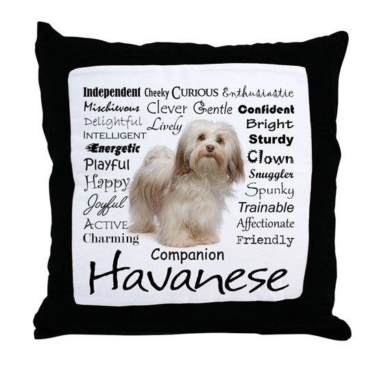 Havanese Traits