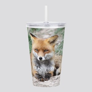 Fox002 Acrylic Double-wall Tumbler