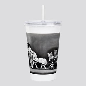Dog Pulling Kittens In Acrylic Double-wall Tumbler