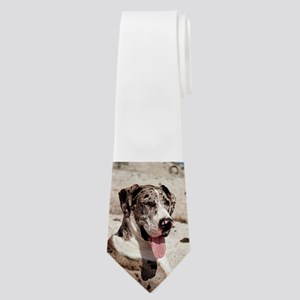 great dane blue merle Neck Tie