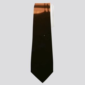 Seagulls at Sunset Neck Tie
